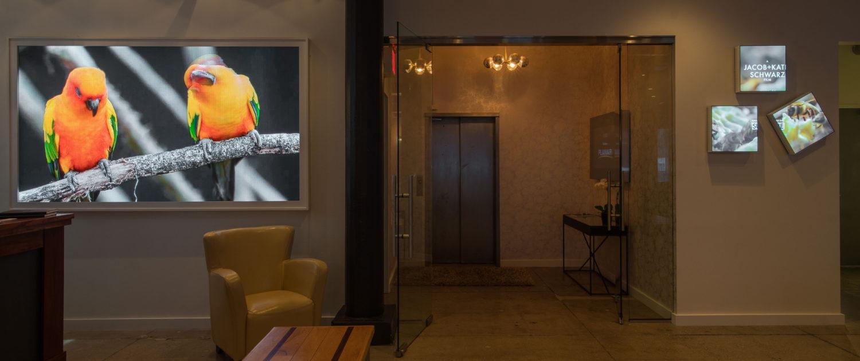 599 West Planar Leyard Foyer 1